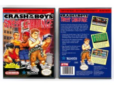 Crash 'n' The Boys: Street Challenge